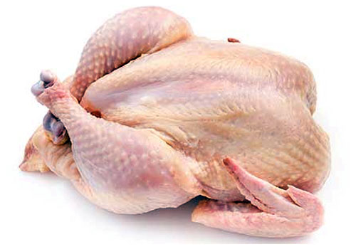 Chicken supplier delhi India